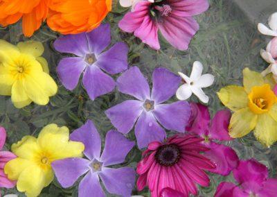 flors Nagore Pardo