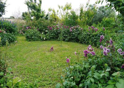 mandala estiu jardi anima
